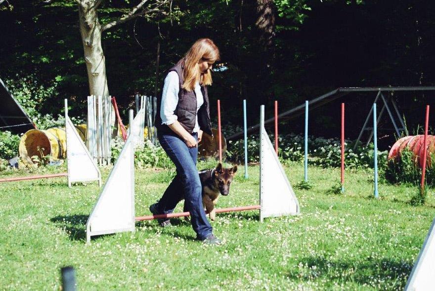 Sybille Aeschbach trainiert einen Junghund